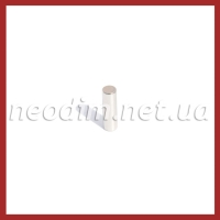 Магнит диск D 6-20 мм
